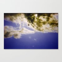 Canvas Print featuring Seaweed by istillshootfilm