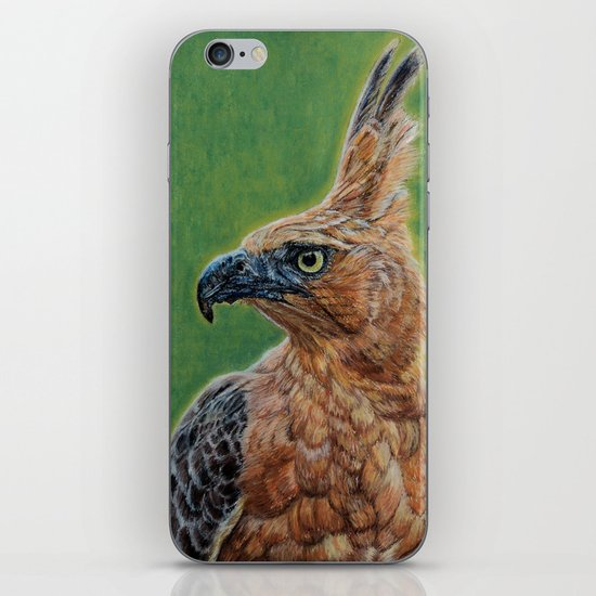 Nisaetus bartelsi iPhone & iPod Skin