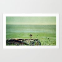 Looked out to Sea Art Print