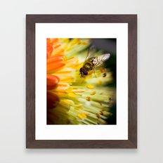Poking Around Framed Art Print
