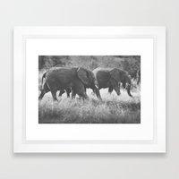 Grazing Elephants Framed Art Print