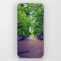 Scenic Spring bridge iPhone & iPod Skin