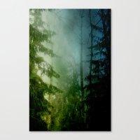 Blue Pines Canvas Print