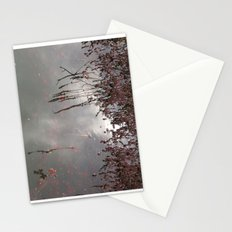 Cranberries Waiting To Be Harvested Stationery Cards