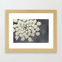 Black and White Queen Annes Lace Framed Art Print