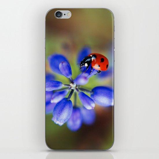Polka Dot iPhone & iPod Skin