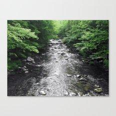 River Runs Canvas Print
