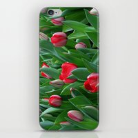 Red Among The Green iPhone & iPod Skin