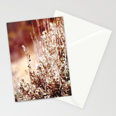 Beguiling Stationery Cards
