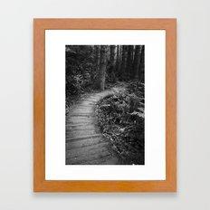 The Pathway Framed Art Print