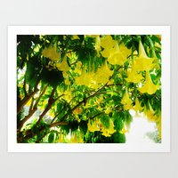 Yellow Flowers. Art Print