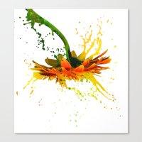 Liquid Daisy Canvas Print