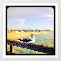 Lazy ass seagull. Art Print