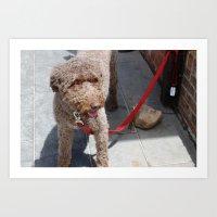 Doggo Art Print