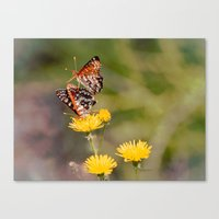 Butterfly Acrobats Canvas Print