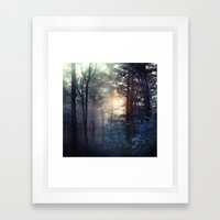 A walk in the forest Framed Art Print