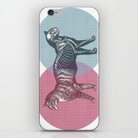 In Which The Cat Is Dead… iPhone & iPod Skin