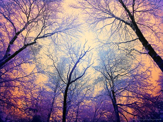 Snow Angel's View - Nature's Painting (color 2) Art Print