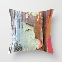 Photograph of painted old shed. Throw Pillow
