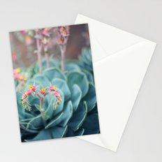Echeveria #1 Stationery Cards