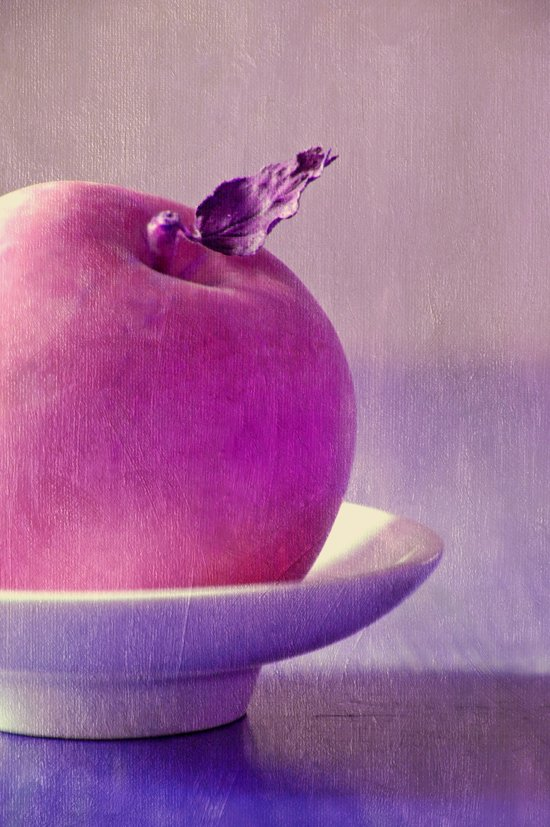 pink apple Canvas Print