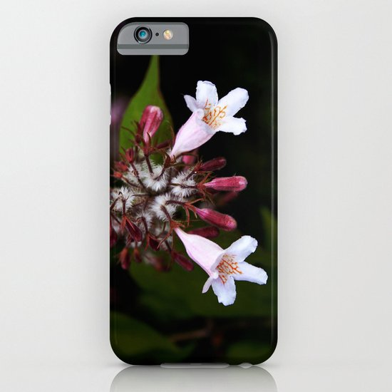 Blossom iPhone & iPod Case