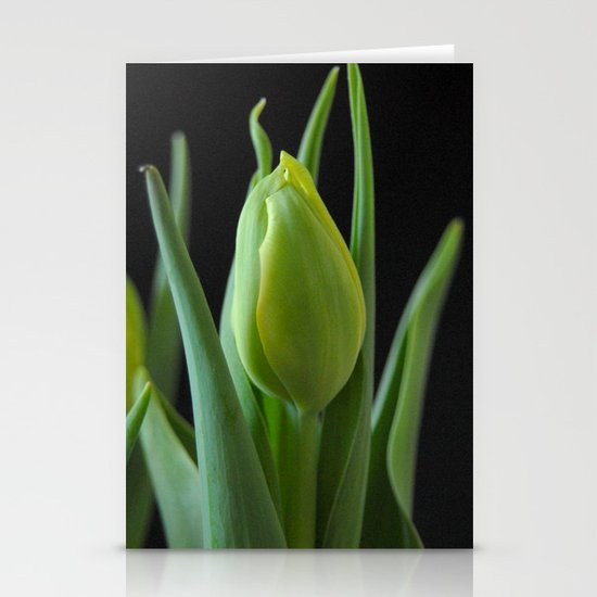Tulip Blossom Stationery Card