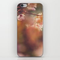 In The Golden Afternoon iPhone & iPod Skin