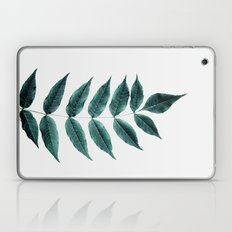 Leaves 3A Laptop & iPad Skin