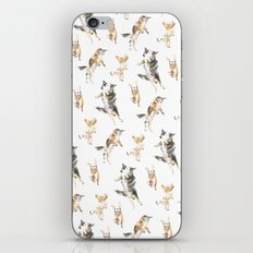 Raining Cats and Dogs iPhone & iPod Skin