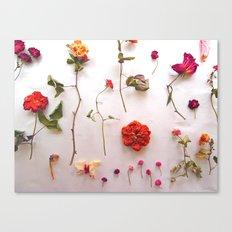 Floral Garden Canvas Print