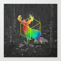 Catch The Reinbow Canvas Print
