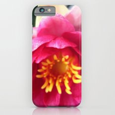Pink WaterLily II iPhone 6 Slim Case