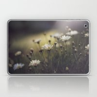 so what if I like pretty things? Laptop & iPad Skin