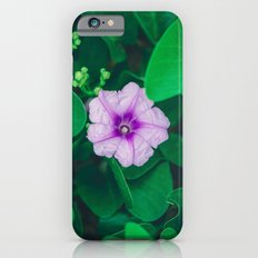 Nature Plants iPhone 6s Slim Case