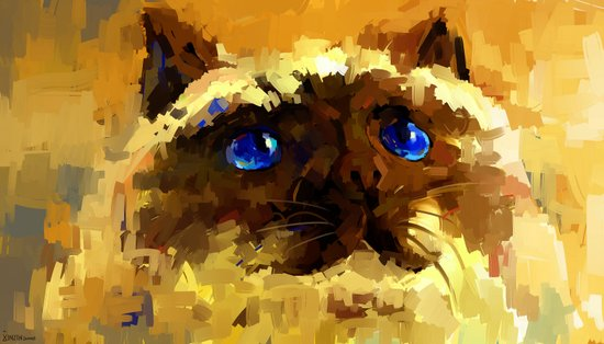 Himalaya cat  Art Print