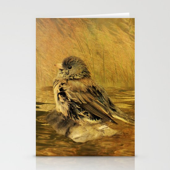 The Bathing Junco Stationery Card