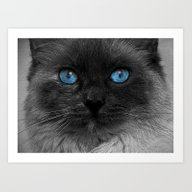 Art Print featuring CATTURE by Catspaws