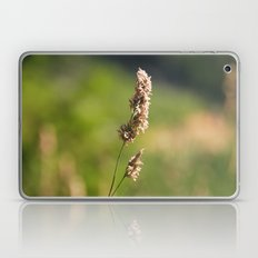 Mountain Grass Laptop & iPad Skin