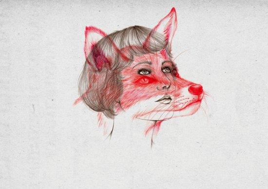 Wildlife III Art Print
