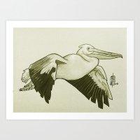 Pellicano Art Print