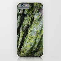 moss, bark iPhone 6 Slim Case