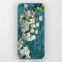Blossom Textured iPhone & iPod Skin