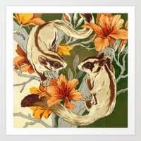 Sugar Gliders Art Print