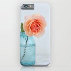 Rose in a Jar iPhone 6s Slim Case