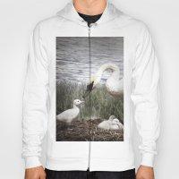 Tom Feiler Swan And Her … Hoody