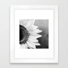 B&W Sunflower Framed Art Print