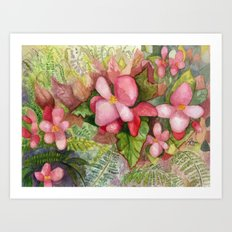 Begonia Beauty Art Print