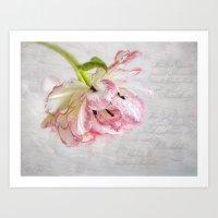Vintage Tulip Art Print