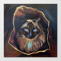 The Ragdoll Cat Is In Th… Canvas Print